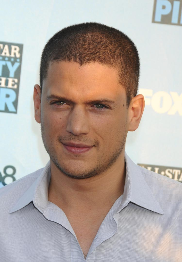 Wentworth miller fox networks 2008 summer tca party gq 01